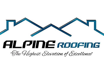 Newport News roofing contractor Alpine Roofing