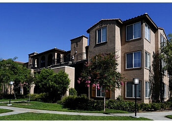 Moreno Valley apartments for rent Alvista Towngate