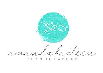 Des Moines wedding photographer Amanda Basteen Photography
