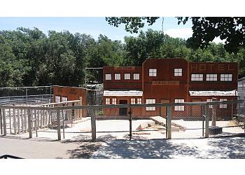 Amarillo places to see Amarillo Zoo