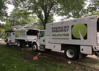 Omaha tree service American Arborist