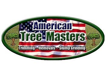 Gilbert tree service American Tree Masters