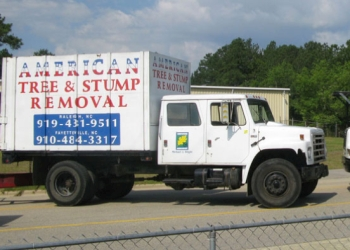Fayetteville tree service American Tree & Stump Removal Inc.