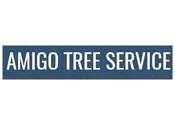 Cary tree service Amigo Tree Services