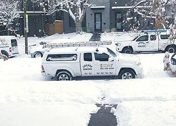 Denver animal removal Anchor Pest Control Services, Inc.
