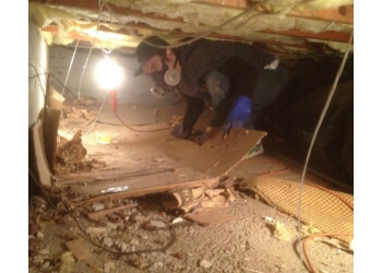 Eugene commercial cleaning service Anderson Janitorial