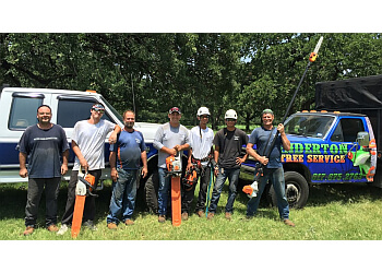 Fort Worth tree service Anderton Tree Service