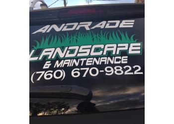 Escondido lawn care service Andrade's Lawn Care