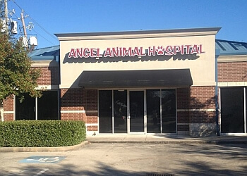 Pasadena veterinary clinic Angel Animal Hospital