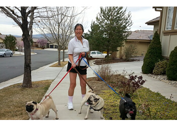 Reno dog walker Angel Pet Sitting