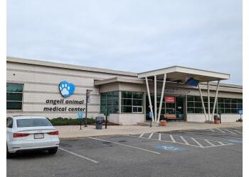 Boston veterinary clinic Angell Animal Medical Center