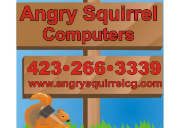 Chattanooga computer repair Angry Squirrel Computers & Graphics