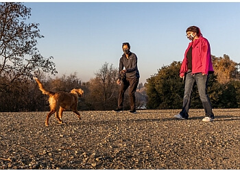 Sacramento dog training Animal Minds Behavior & Training