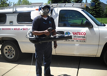 Sterling Heights pest control company AntEco Pest Control