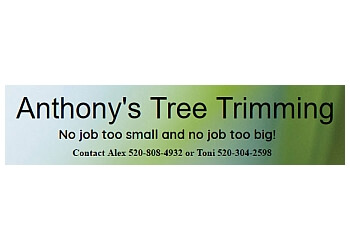 Anthony's Tree Trimming