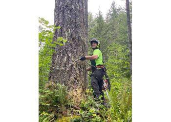 Tacoma tree service Apex Tree Experts