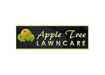 Apple Tree Lawn care