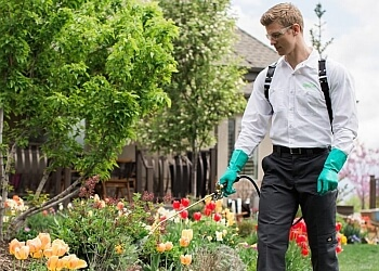 3 Best Pest Control Companies In Overland Park Ks