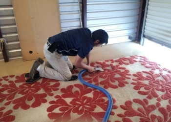 3 Best Carpet Cleaners In Houston Tx Threebestrated