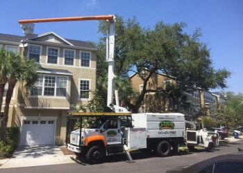 Tampa tree service Arbor Bay, Inc