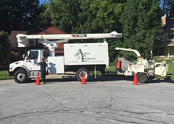 Dayton tree service Arbor Experts Inc.