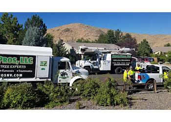 Reno tree service Arbor Pros, LLC