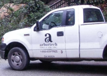 Hayward tree service ArborTech Tree Care