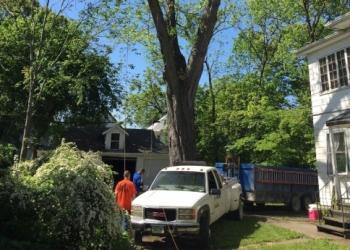Cedar Rapids tree service Arbor Tech Tree Service