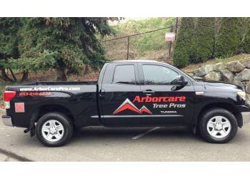Tacoma tree service Arborcare Tree Pros