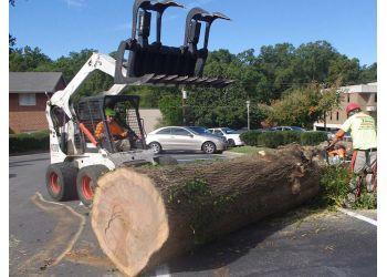 Raleigh tree service Arbormax Tree Service