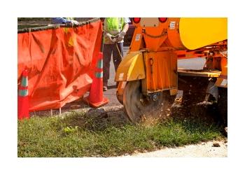 Hampton tree service Ashe Tree Removal & Stump Grinding
