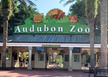 New Orleans places to see Audubon Zoo