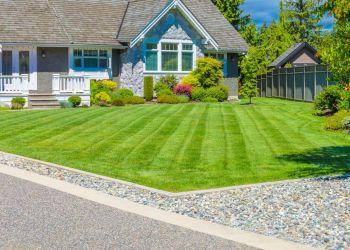 Modesto lawn care service Augusta Lawn Care