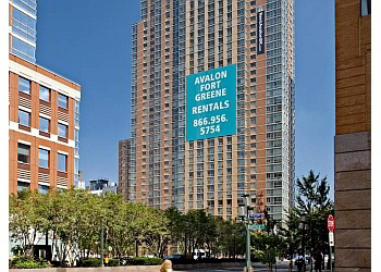 New York apartments for rent Avalon Fort Greene