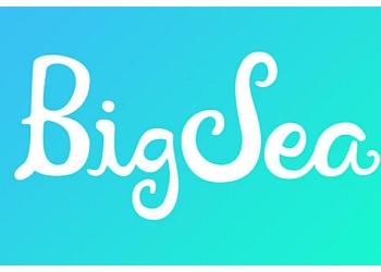 St Petersburg advertising agency BIG SEA