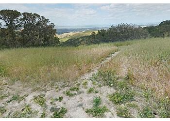 Antioch hiking trail BLACK DIAMOND MINES REGIONAL PRESERVE