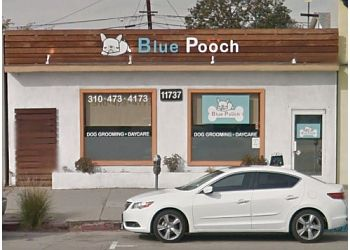 Los Angeles pet grooming BLUE POOCH