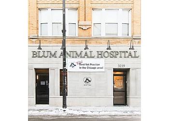 Chicago veterinary clinic BLUM ANIMAL HOSPITAL