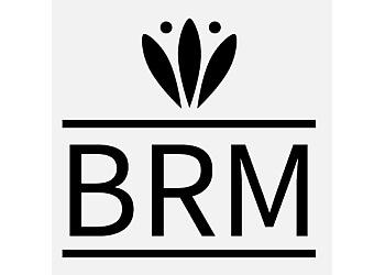 Fort Worth web designer BRM Web Dev