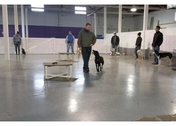 Baltimore dog training Baltimore Dogworks, LLC
