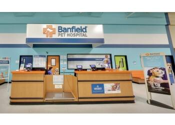 West Valley City veterinary clinic Banfield Pet Hospital