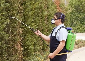 Joliet pest control company Bannon Exterminating