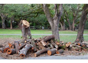 Buffalo tree service Barden Tree Services Inc.