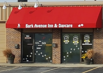 Omaha pet grooming Bark Avenue