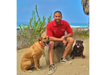 San Diego dog training Bark Busters Home Dog Training