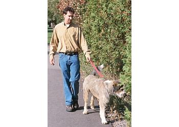 Stockton dog walker Barking Buddies Dog Walking
