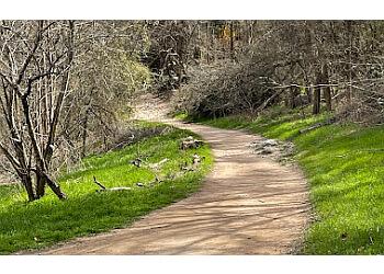 Austin hiking trail Barton Creek Greenbelt