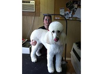 Birmingham pet grooming Baths Barks & Bubbles Pet Spa