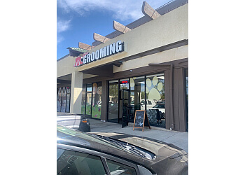 Baxter's Pet Grooming