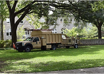 New Orleans tree service Bayou Tree service Inc.